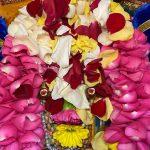 Sri Ramanujacharya Jayanthi celebration by Virginia Namadwaar