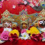 Sri Jagannatha Ratha Yatra Day Celebration by Virginia Namadwaar