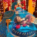 Radhashtami Celebration across states in the USA